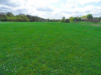 The puppy area - Puppy Training and classes